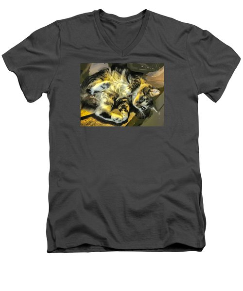 Men's V-Neck T-Shirt featuring the photograph Maine Coon Cat At Play by Constantine Gregory