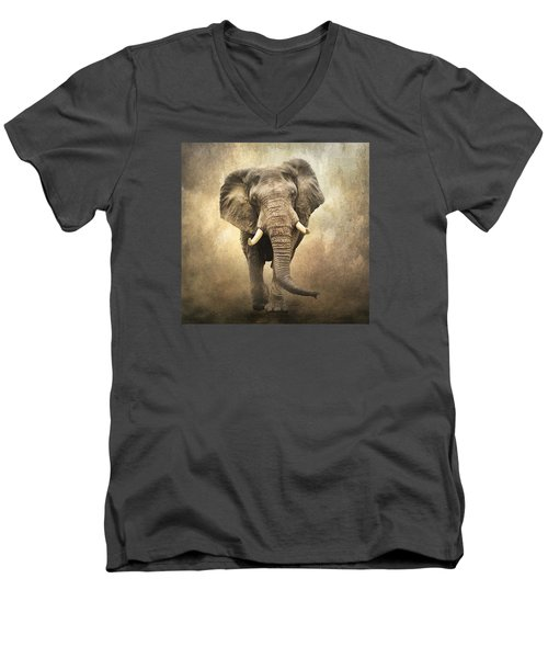 Men's V-Neck T-Shirt featuring the photograph Majestic Beauty by Brian Tarr