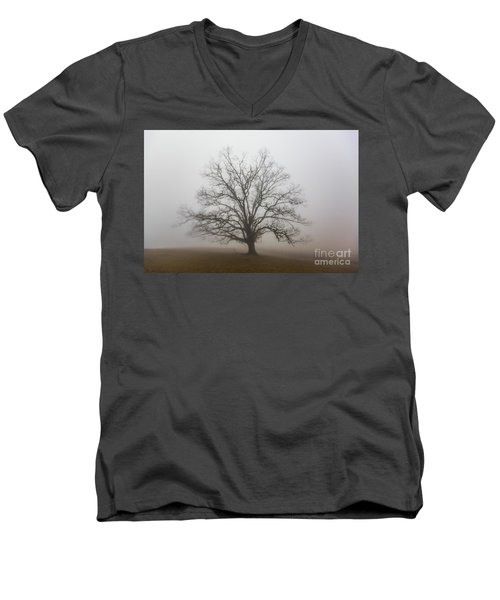 Majestic Fog Men's V-Neck T-Shirt by Robert Loe