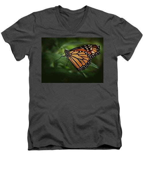 Majestic Monarch Men's V-Neck T-Shirt by Marie Leslie