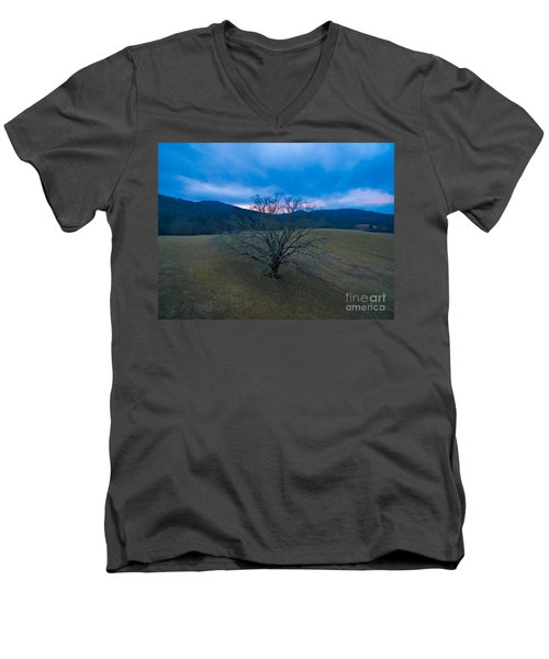 Majestical Tree Men's V-Neck T-Shirt by Robert Loe