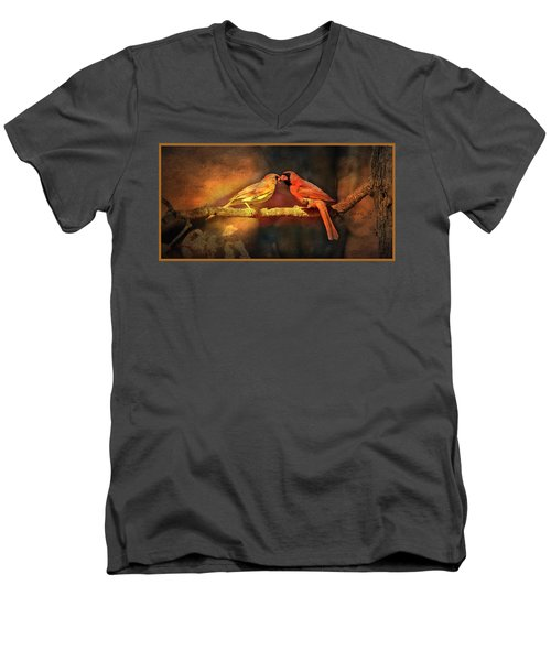 Male And Female Cardinal Men's V-Neck T-Shirt