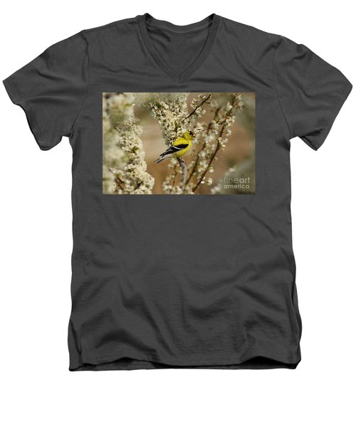 Male Finch In Blossoms Men's V-Neck T-Shirt by Cathy  Beharriell