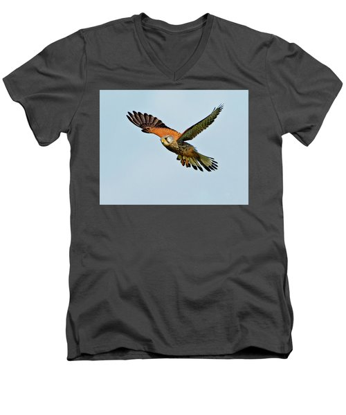 Men's V-Neck T-Shirt featuring the photograph Male Kestrel In The Wind. by Paul Scoullar