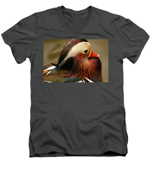 Male Mandarin Duck China Men's V-Neck T-Shirt by Ralph A  Ledergerber-Photography