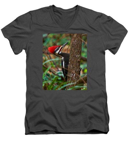 Male Pileated Woodpecker Men's V-Neck T-Shirt by Robert L Jackson