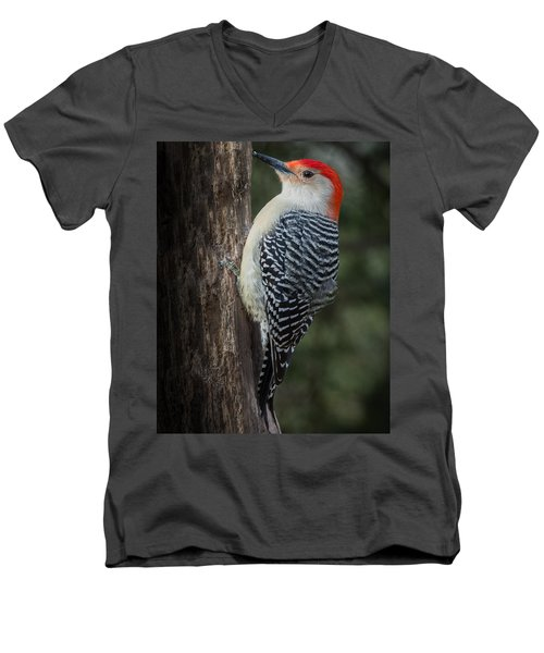 Male Red-bellied Woodpecker Men's V-Neck T-Shirt by Kenneth Cole