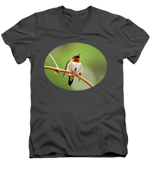 Male Ruby-throated Hummingbird Men's V-Neck T-Shirt by Christina Rollo