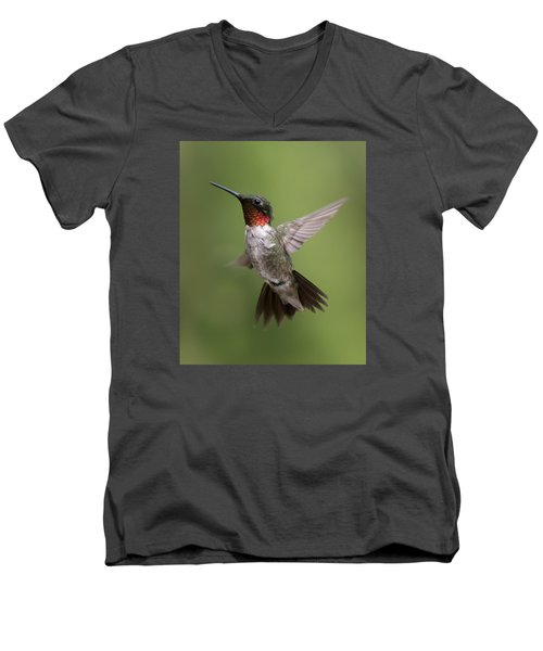 Male Ruby Throated Hummingbird Men's V-Neck T-Shirt by David Lester