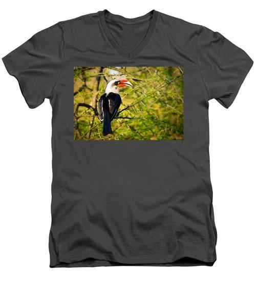 Male Von Der Decken's Hornbill Men's V-Neck T-Shirt by Adam Romanowicz