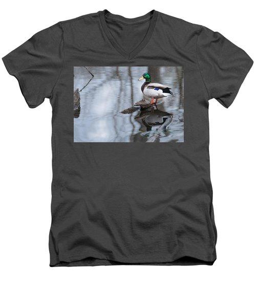 Mallard Drake Men's V-Neck T-Shirt