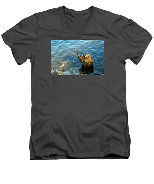 Mallard Duck In The Fox River Men's V-Neck T-Shirt