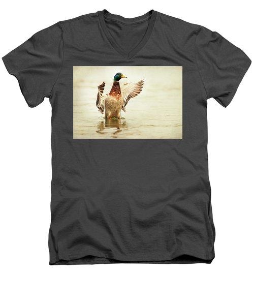 Mallard Men's V-Neck T-Shirt