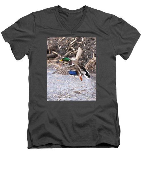 Mallard Flight Men's V-Neck T-Shirt