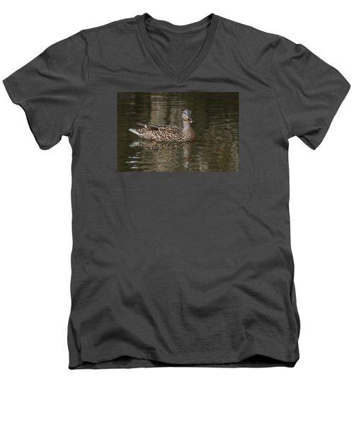 Mallard Hen Men's V-Neck T-Shirt by Elaine Malott