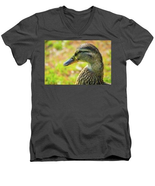 Mallard Portrait - Female Men's V-Neck T-Shirt