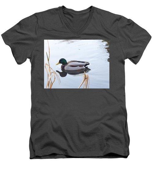 Mallard Reflected Men's V-Neck T-Shirt