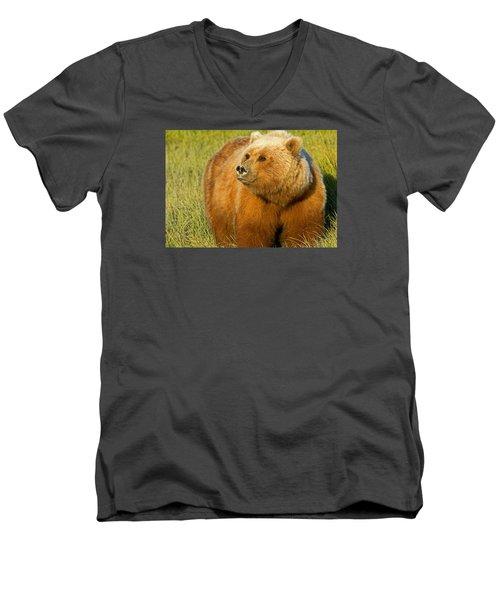 Mama Bear Men's V-Neck T-Shirt