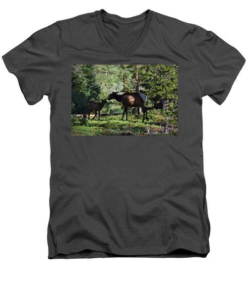 Elk Calf - Mother Rmnp Co Men's V-Neck T-Shirt