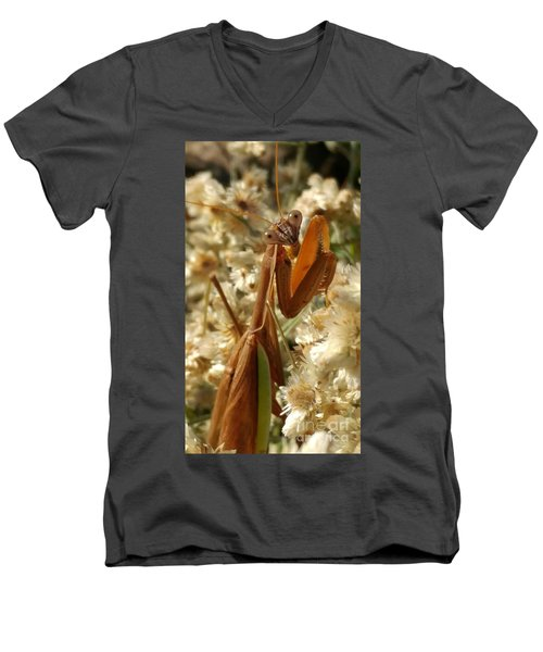 Mantis Pose Men's V-Neck T-Shirt