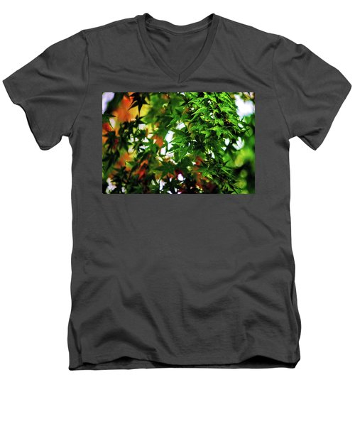 Maple In The Mist Men's V-Neck T-Shirt by Mark Lucey