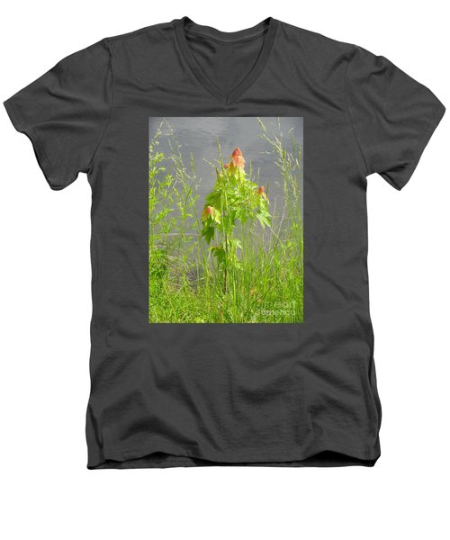 Maple On Lake Men's V-Neck T-Shirt by Craig Walters