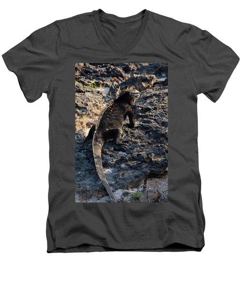 Marine Iguana, Amblyrhynchus Cristatus Men's V-Neck T-Shirt