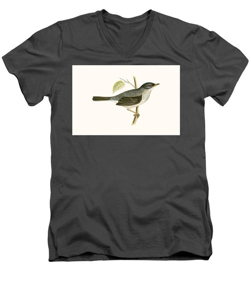 Marmora's Warbler Men's V-Neck T-Shirt by English School