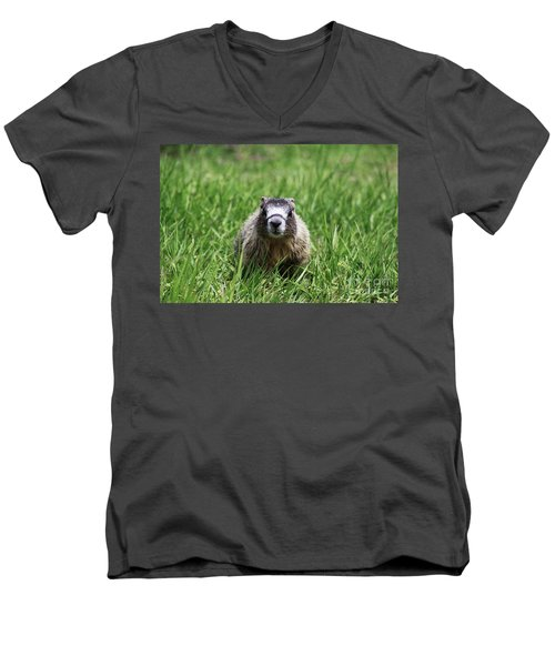 Marmot Pup Men's V-Neck T-Shirt