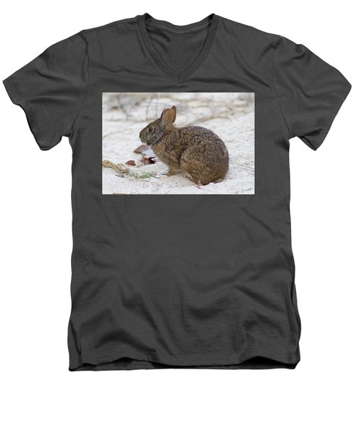 Marsh Rabbit On Dune Men's V-Neck T-Shirt