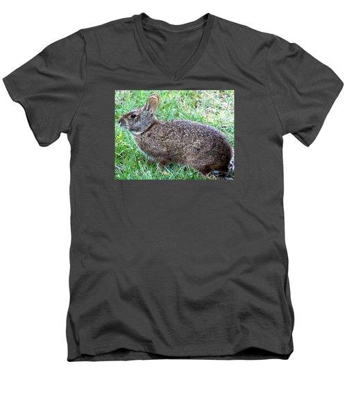 Marsh Rabbit Run Rabbit  Men's V-Neck T-Shirt by Chris Mercer