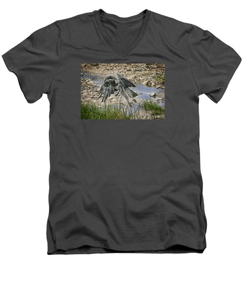 Men's V-Neck T-Shirt featuring the photograph Martial Eagle by Gary Hall