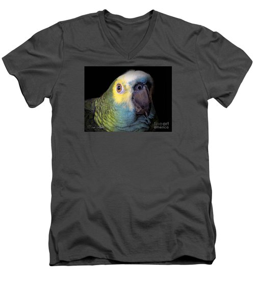 Marty The Blue Front Amazon Men's V-Neck T-Shirt by Melissa Messick