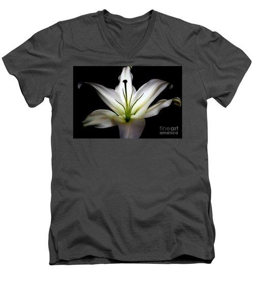 Masculinity Men's V-Neck T-Shirt