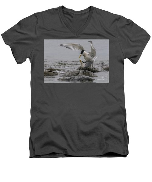 Men's V-Neck T-Shirt featuring the photograph Mating Pair 2 by Werner Padarin