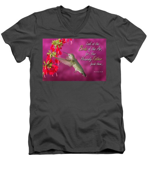 Matthew 6 26 Men's V-Neck T-Shirt