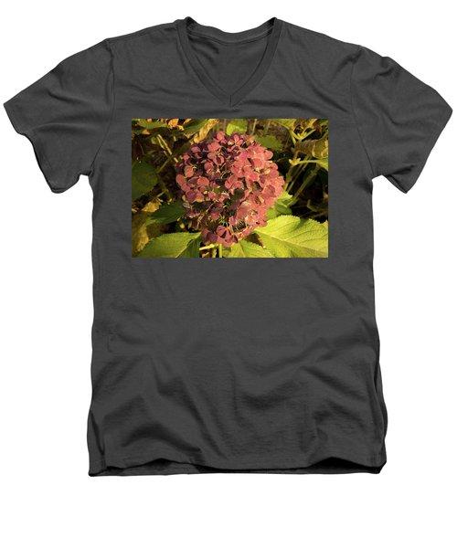 Mature Hydrangea Blossom Cluster Men's V-Neck T-Shirt