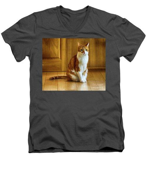 Max The Thinker Men's V-Neck T-Shirt