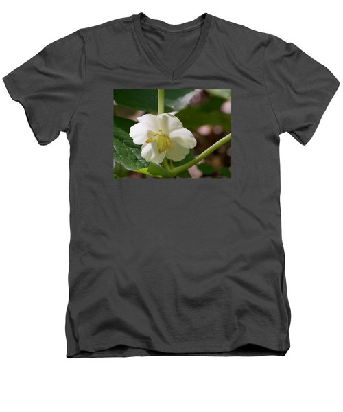 May-apple Blossom Men's V-Neck T-Shirt by Linda Geiger