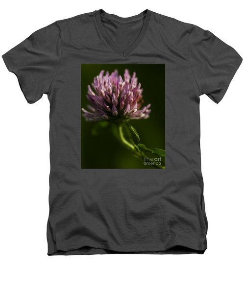 Men's V-Neck T-Shirt featuring the photograph Meadow Clover by JT Lewis