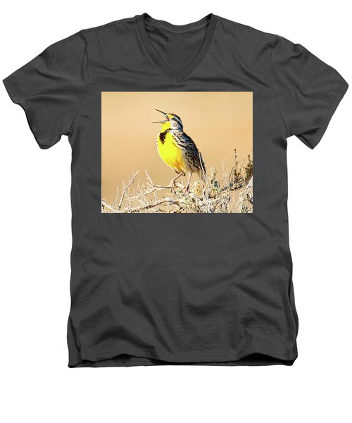 Meadow Lark Men's V-Neck T-Shirt