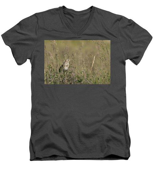 Meadow Pipit Men's V-Neck T-Shirt
