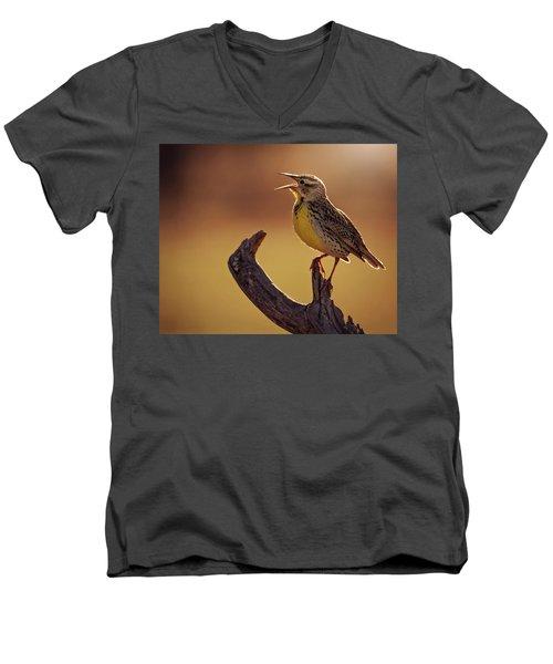 Meadowlark Men's V-Neck T-Shirt