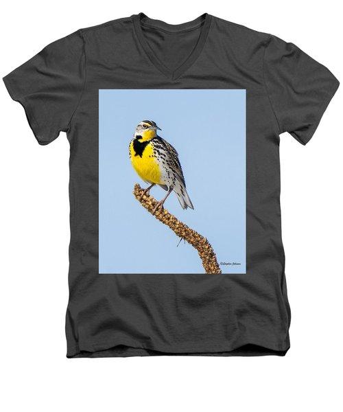Meadowlark On Mullein Stalk Men's V-Neck T-Shirt by Stephen Johnson