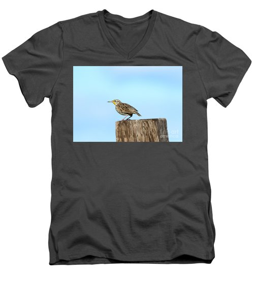Meadowlark Roost Men's V-Neck T-Shirt by Mike Dawson