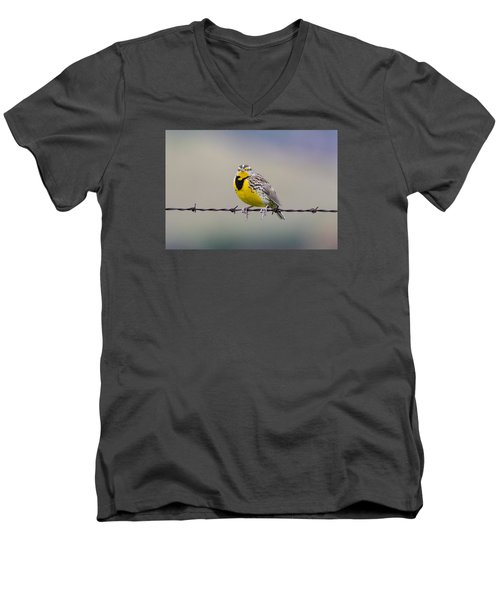 Meadowlark Stare Men's V-Neck T-Shirt by Marc Crumpler
