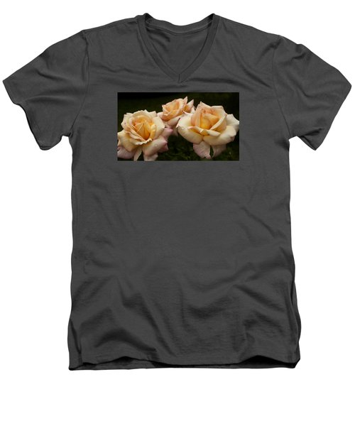 Men's V-Neck T-Shirt featuring the photograph Medley Of Three Yellow Roses by Barbara Middleton