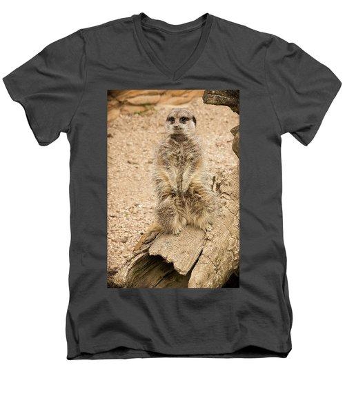 Men's V-Neck T-Shirt featuring the photograph Meerkat by Chris Boulton