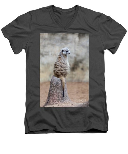 Meerkat Sitting And Looking Right Men's V-Neck T-Shirt