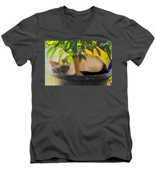 Meezer Tree Men's V-Neck T-Shirt